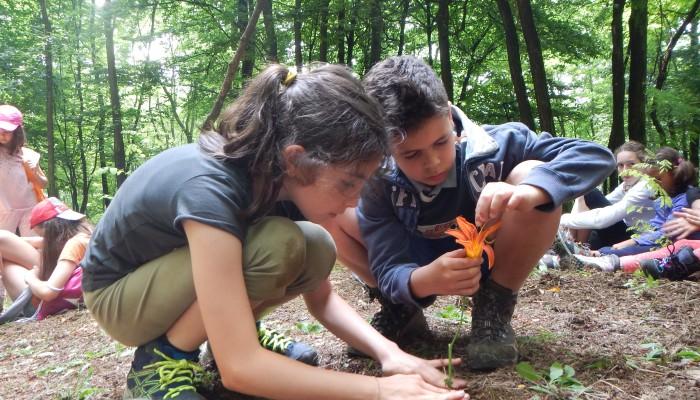 Campo Solare Estivo a Bergamo -  La terra: un dono da conoscere e da amare