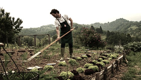 Campo solare estivo presso l'agriturismo Il Belvedere - L'orto: la cura paziente della terra